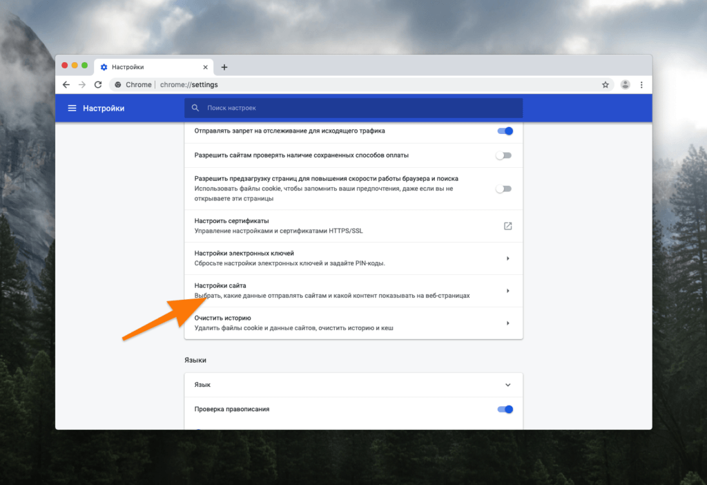 Окно настроек в Google Chrome