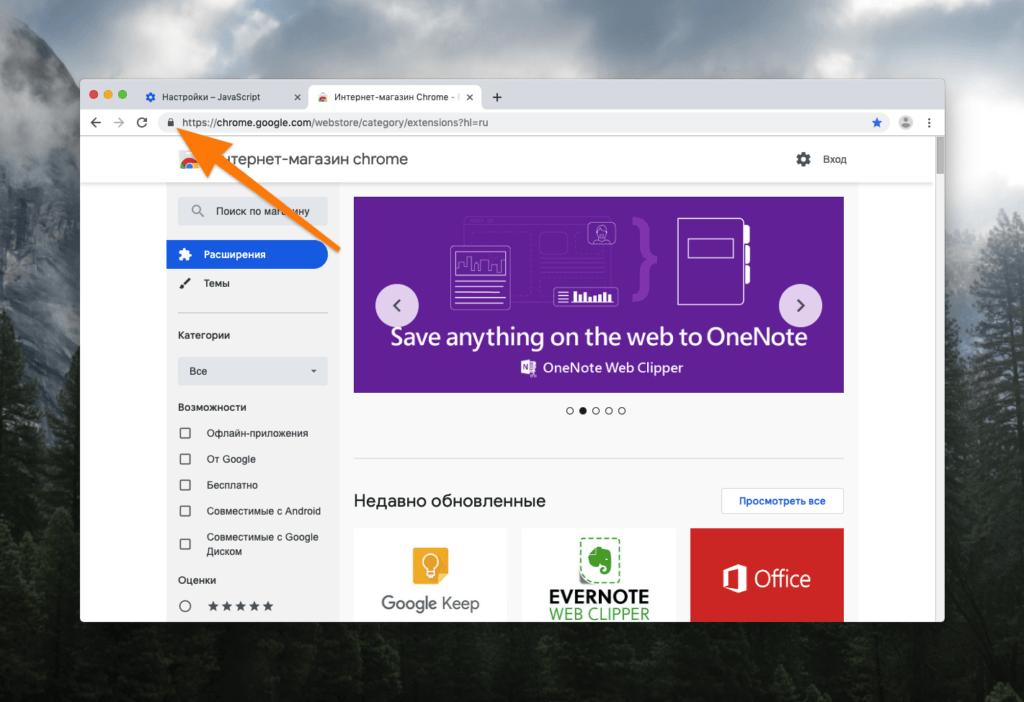 Сайт Chrome Web Store, открытый в Google Chrome