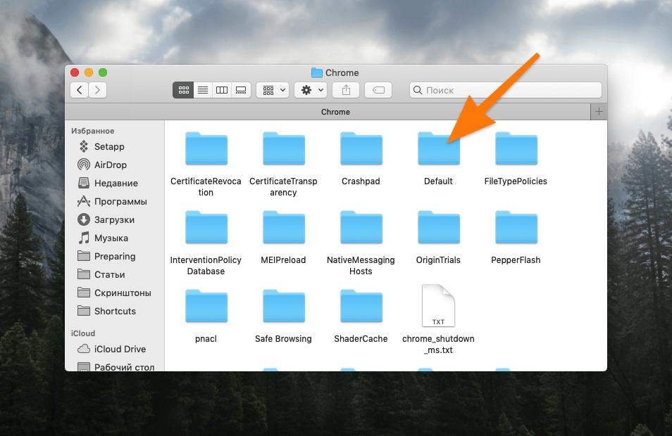 Содержимое папки Chrome в macOS