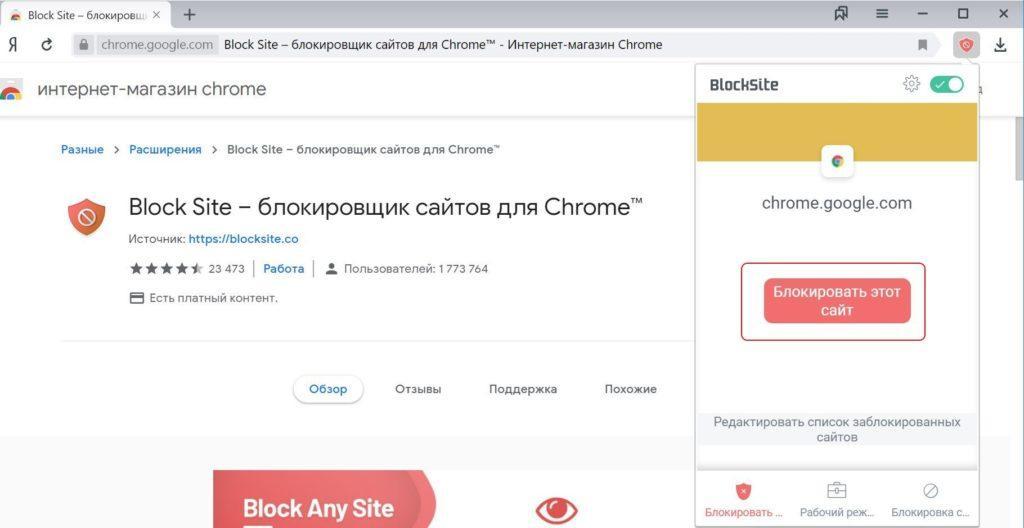 Блокировка отдельного сайта в Block Site