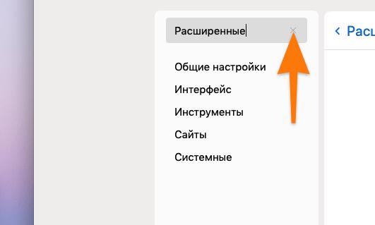 Результаты поиска в настройках Яндекс.Браузера