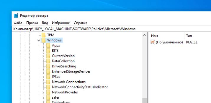Содержимое папки Windows в редакторе реестра