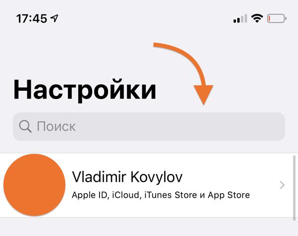 Поиск в системных настройках iOS на Айфоне