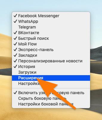 Список параметров боковой панели в браузере Opera