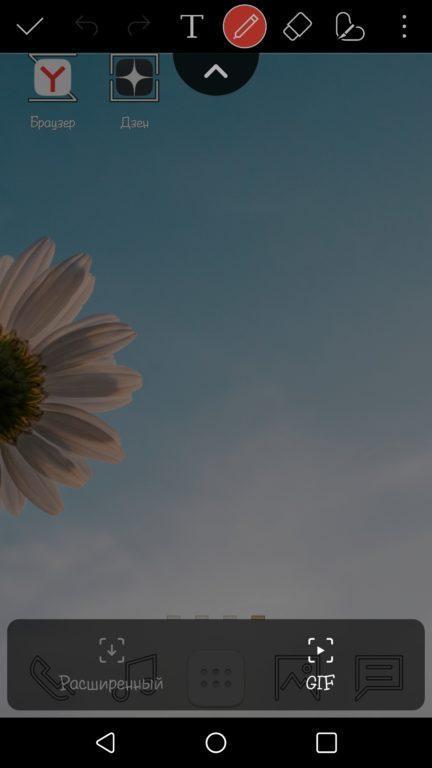 Видео с экрана GIF