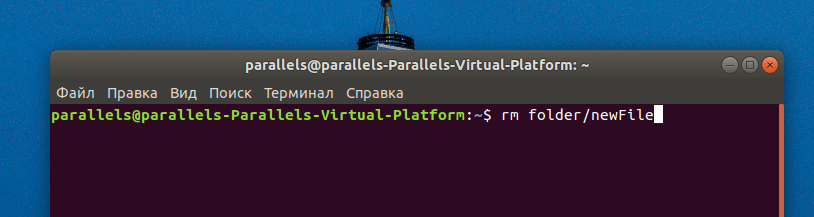 Терминал с введенной командой rm в Ubuntu