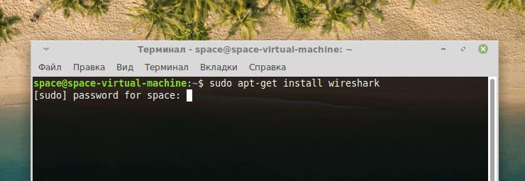 Запрос на ввод пароля в терминале Linux Mint