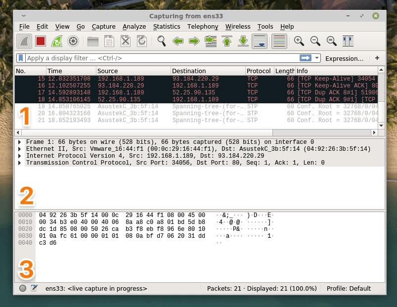 Основной интерфейс Wireshark с перехваченным пакетами