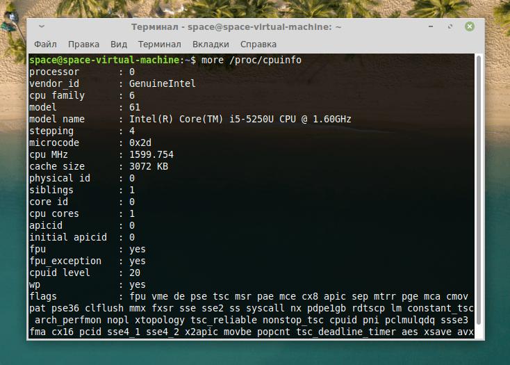 Содержимое файла /proc/cpuinfo