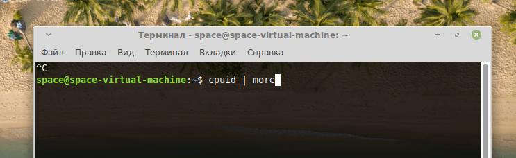 Команда для вывода информации о процессоре