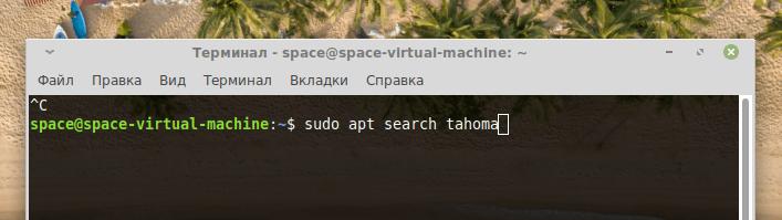 Команда поиска пакето в Ubuntu-подобных системах