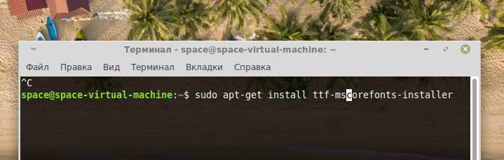 Команда установки пакета mscorefonts