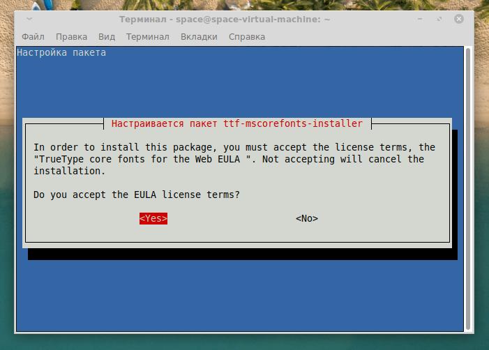 Диалоговое окно с согласием на лицензионные условия Microsoft