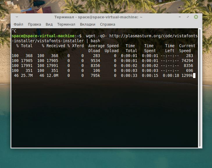Процесс загрузки шрифтов Windows с помощью программы wget