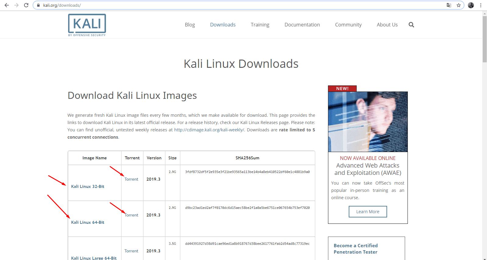 Скачивание образа Kali с официального сайта
