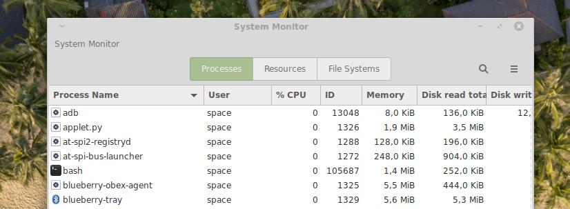 Диспетчер задач Gnome в Linux Mint