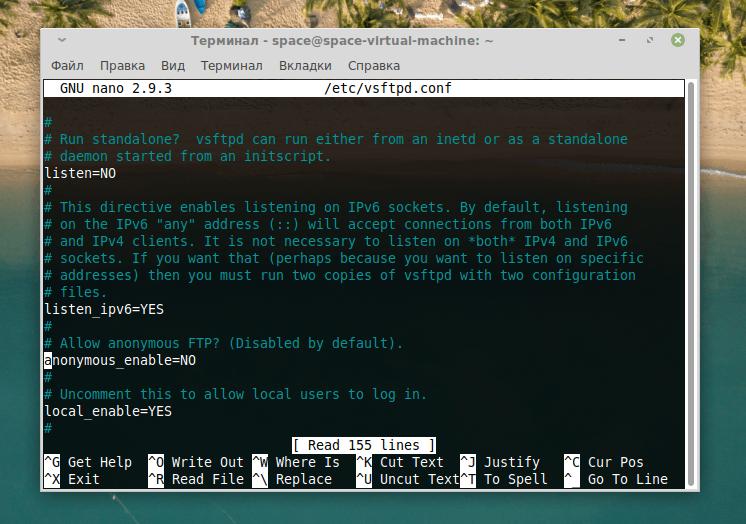 Конфигурационный файл FTP с отключенным анонимным режимом