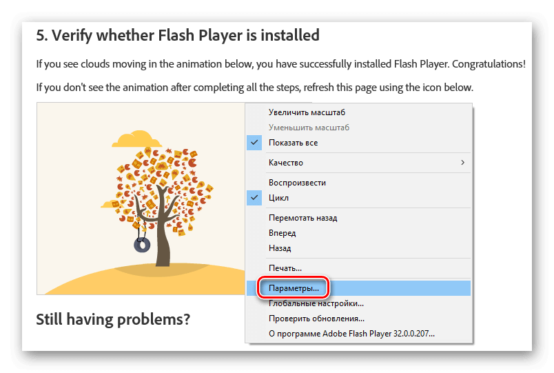 Параметры Flash Player в контекстном меню
