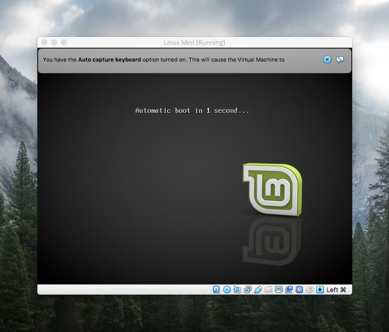 Стартовое окно установки Linux Mint
