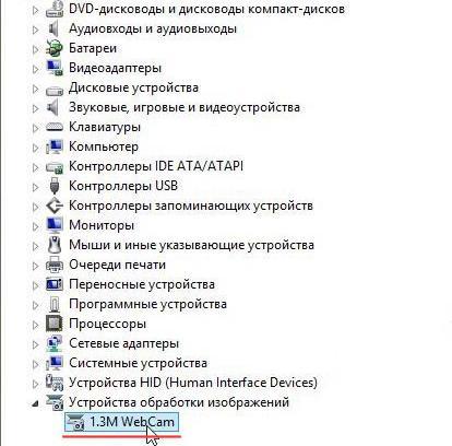 Диспетчер устройств - Устройства обработки изображений - Веб камера