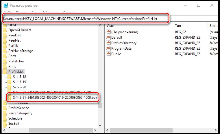 Раздел ProfileList в реестре