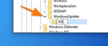 Директория AU в разделе WindowsUpdate