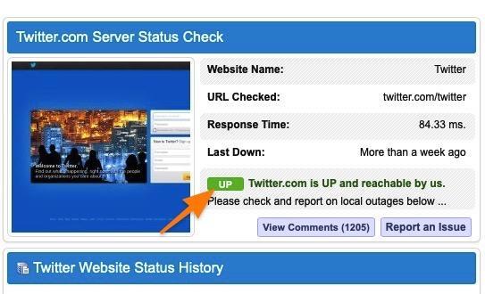 Результат проверки сайта на доступность